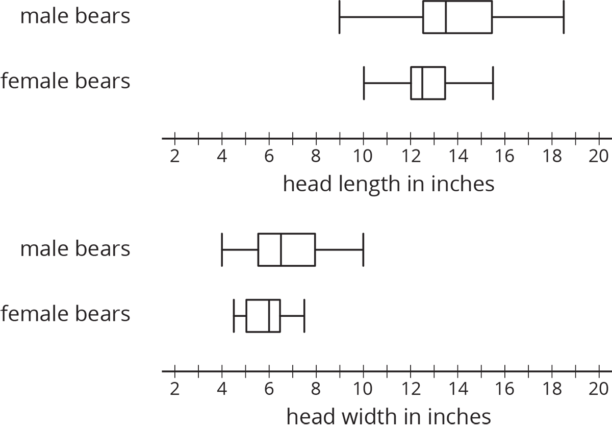 "Two sets of box plots for ""head length in inches"" and ""head width in inches"". The numbers 2 through 20, in increments of 2, are indicated and there are tick marks midway between each indicated number.  For ""head length in inches"" the top box plot is labeled ""male bears"" and the five-number summary are as follows: Minimum value, 9. Maximum value, 19. Q1, 12 point 5. Q2, 13 point 5. Q3, 15 point 5. The bottom box plot is labeled ""female bears"" and the five-number summary are as follows: Minimum value, 10. Maximum value, 15 point 5. Q1, 12. Q2, 12 point 5. Q3, 13 point 5. For ""head width in inches"" the top box plot is labeled ""male bears"" and the five-number summary are as follows: Minimum value, 4. Maximum value, 10. Q1, 5 point 5. Q2, 6 point 5. Q3, 8. The bottom box plot is labeled ""female bears"" and the five-number summary are as follows: Minimum value, 4 point 5. Maximum value, 7 point 5. Q1, 5. Q2, 6. Q3, 7 point 5."